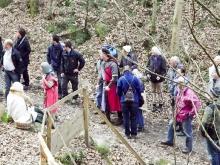 Exkursion im Schatten der Burg Kuernberg am 15.03.2015-12